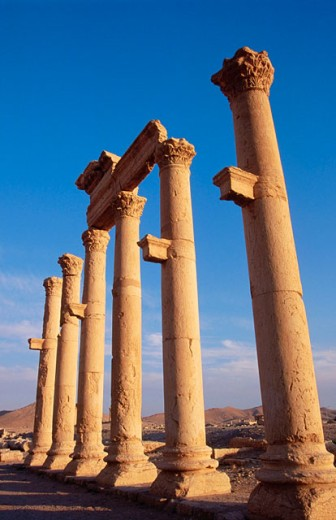 Colonnades and arches. Cardo Maximus. Palmyra. Syria : Stock Photo