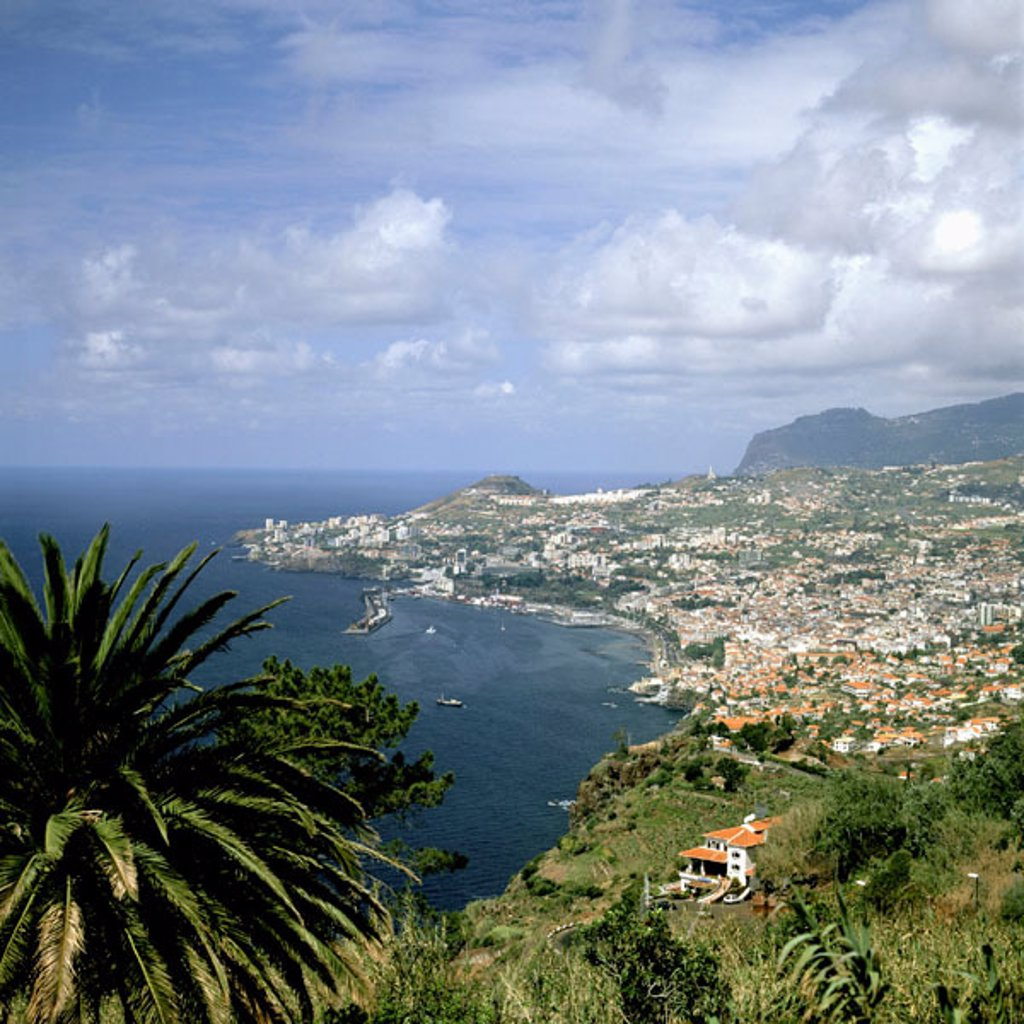 Stock Photo: 1566-069117 Funchal city in Medeira Island. Portugal