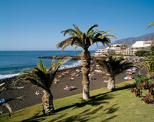 Stock Photo: 1566-071169 Spain, Tenerife, Canary Islands, Puerto de Santiago, Playa de la Arena, beach, palms