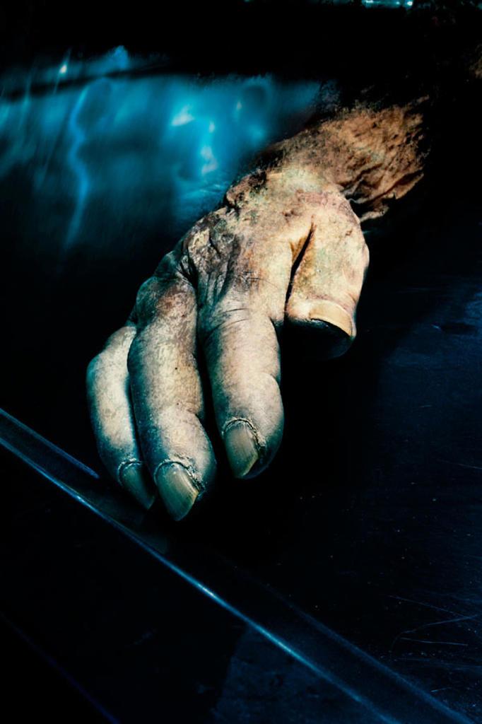 Stock Photo: 1566-075706 Hand