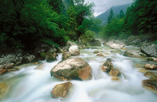 Upper course of the River Soca. Triglav National Park. Slovenia : Stock Photo