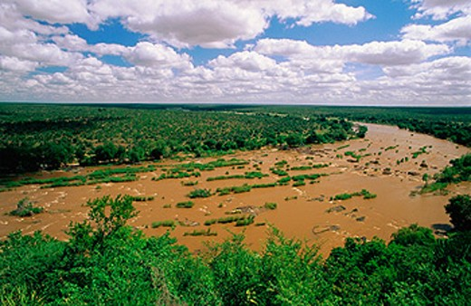 Stock Photo: 1566-084840 Letaba River. Kruger National Park. South Africa