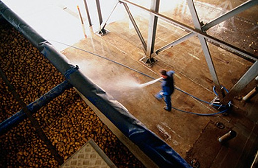 Stock Photo: 1566-088365 French fry factory. Steenderen. Holland