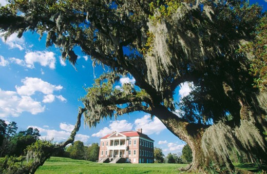 Stock Photo: 1566-091806 Drayton Hall (built 1738), pre-civil war plantation. Charleston. South Carolina, USA