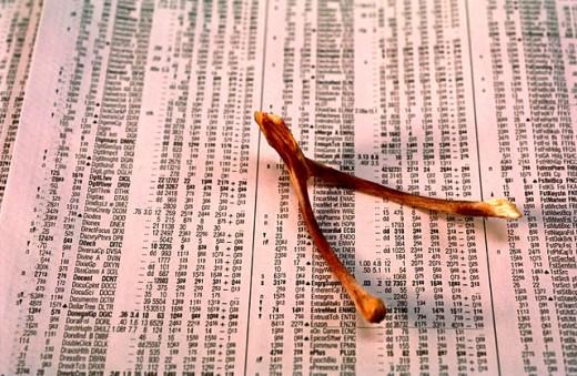 : Stock Photo