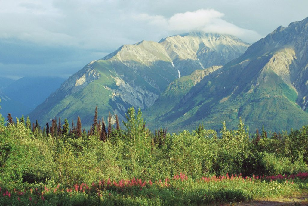 Stock Photo: 1566-094756 Matanuska Valley. Alaska. USA