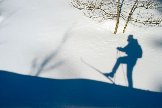 Shadow of cross-country skier in the snow int the cross-country ski run : Stock Photo