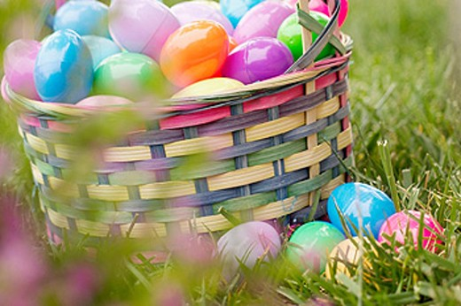 Easter egg basket : Stock Photo