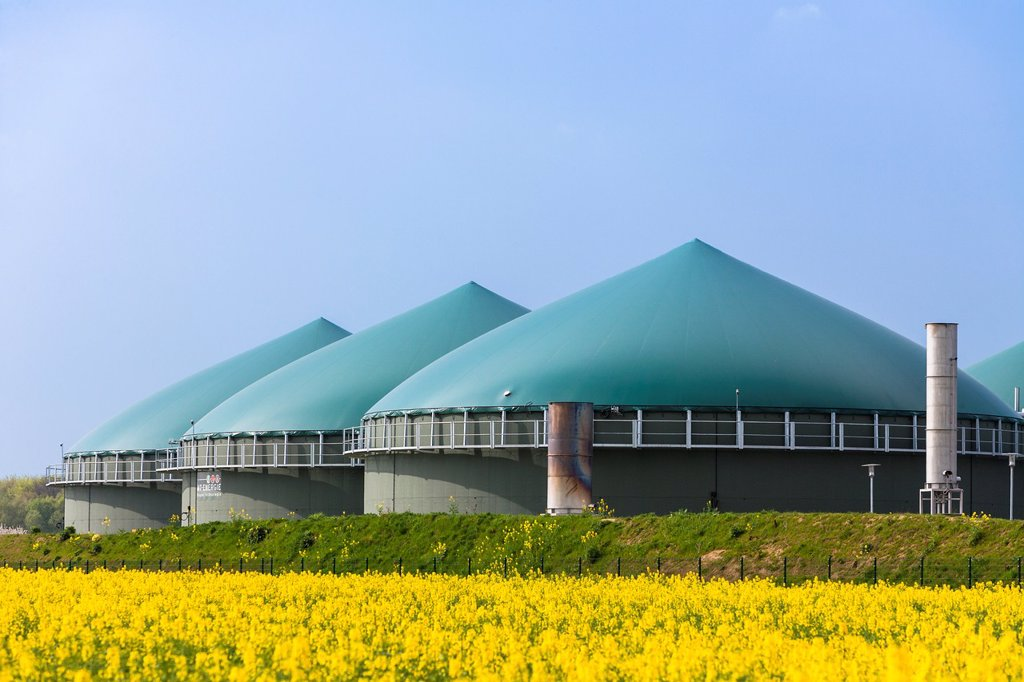 Biogas plant in the middle of a rapeseed field, Lower Saxony, Germany, Europe : Stock Photo