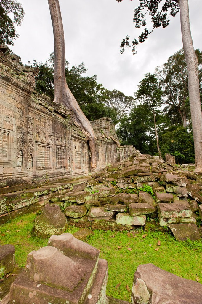 Preah KhanPrah Khan, Sacred Sword, is a temple at Angkor, Cambodia, built in the 12th century for King Jayavarman VII, It is located northeast of Angkor Thom, Angkor, UNESCO World Heritage Site, Cambodia, Indochina, Southeast Asia, Asia : Stock Photo