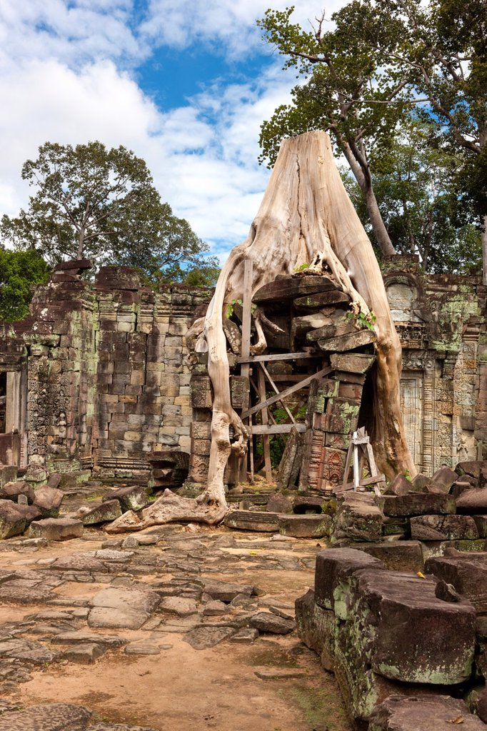 Stock Photo: 1566-1006188 Preah Khan Sacred Sword, Angkor, UNESCO World Heritage Site, Cambodia, Indochina, Southeast Asia, Asia