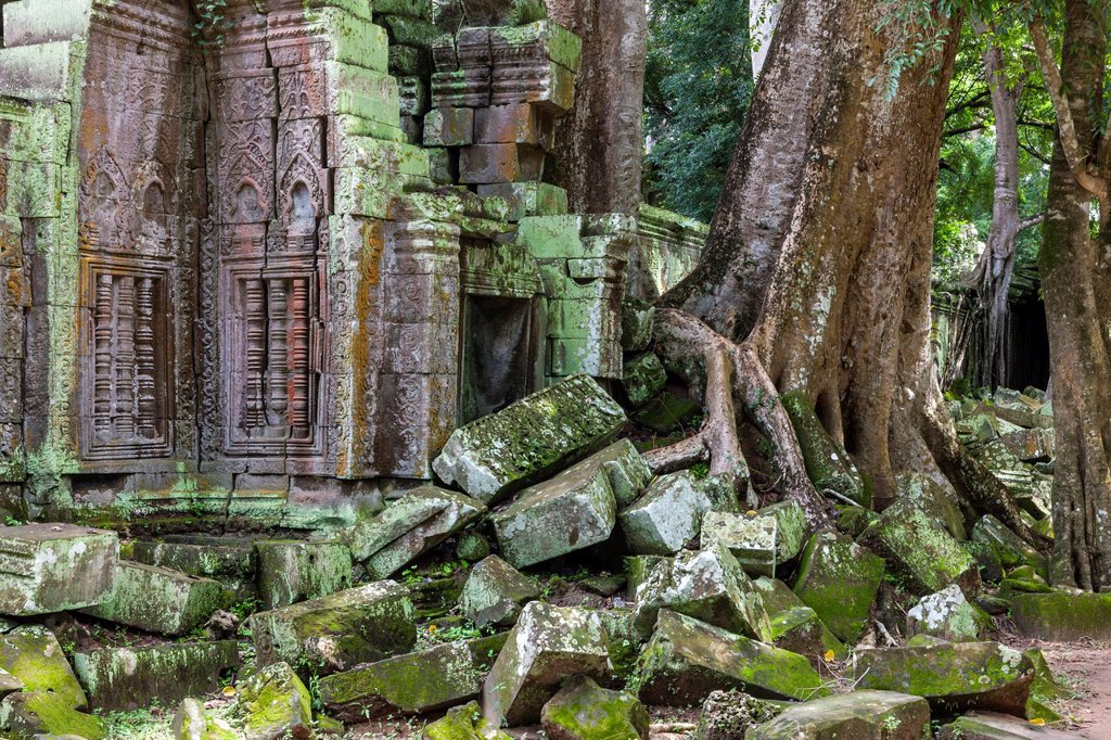 Stock Photo: 1566-1006195 Ta Prohm is the modern name of a temple at Angkor, Siem Reap Province, Cambodia, built in the Bayon style largely in the late 12th and early 13th centuries and originally called Rajavihara Located approximately one kilometre east of Angkor Thom and on the. Ta Prohm is the modern name of a temple at Angkor, Siem Reap Province, Cambodia, built in the Bayon style largely in the late 12th and early 13th centuries and originally called Rajavihara Located approximately one kilometre east of Angkor Tho