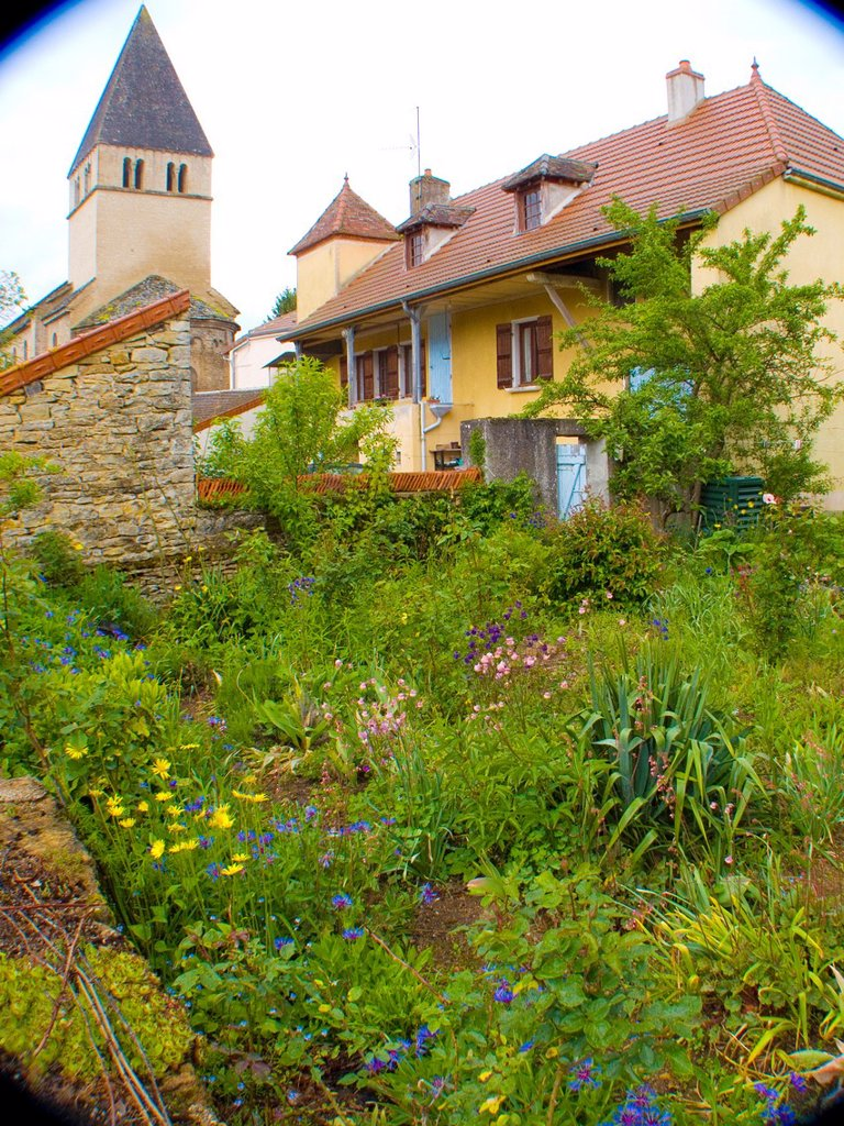 genouilly,saone et loire,france : Stock Photo