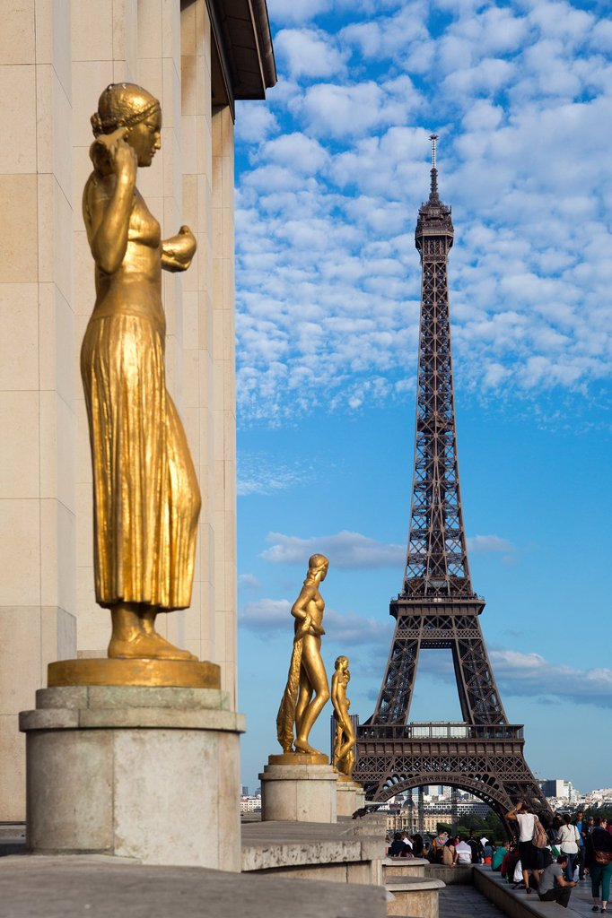 Stock Photo: 1566-1007699 France , Paris City, Eiffel Tower from Trocadero