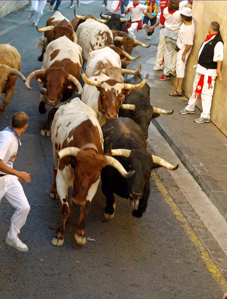 Stock Photo: 1566-1008290 running of the bulls in San Fermin Pamplona 2012