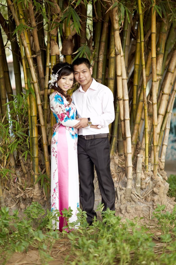A formally dressed couple having their portrait taken in front of a small bamboo grove : Stock Photo