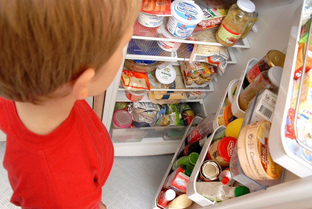 Stock Photo: 1566-1013522 Young boy looking in a fridge