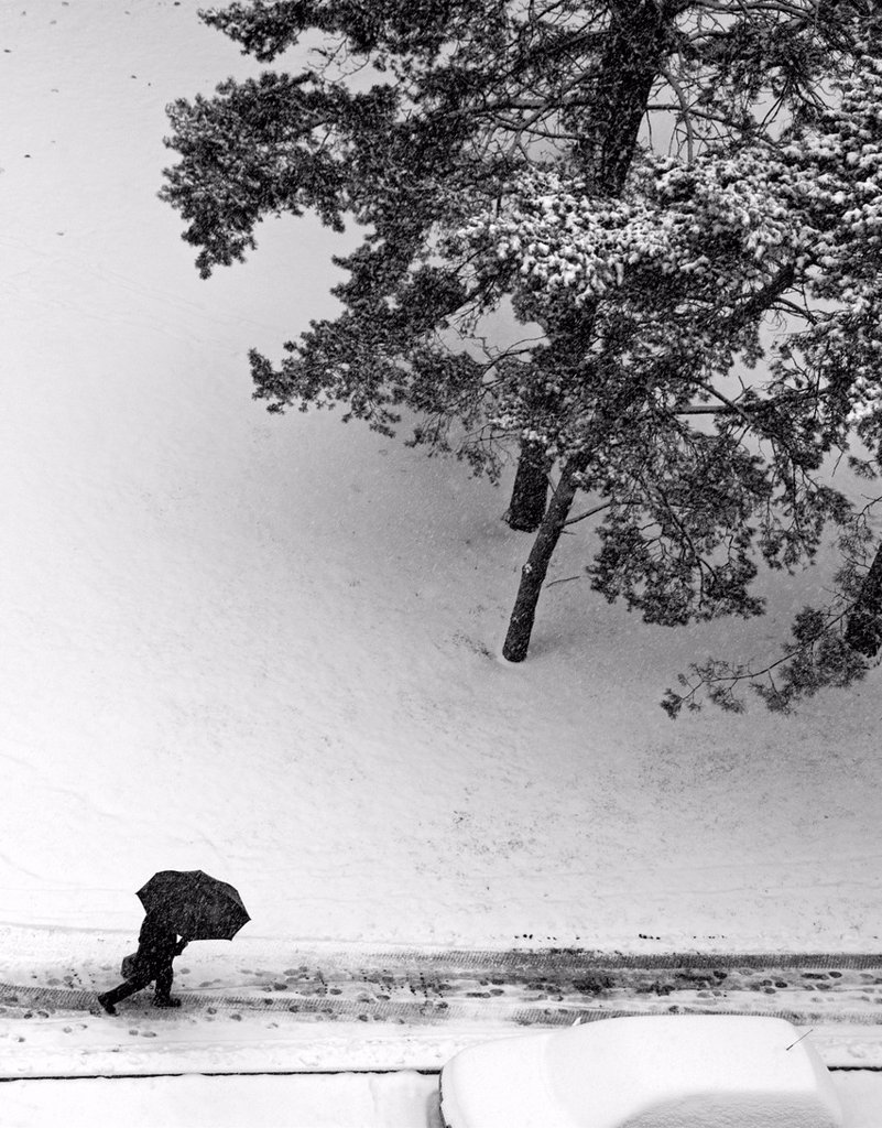 Stock Photo: 1566-1019286 snowed street, man walking under umbrella, snowfall, winter in Geneve, Switzerland