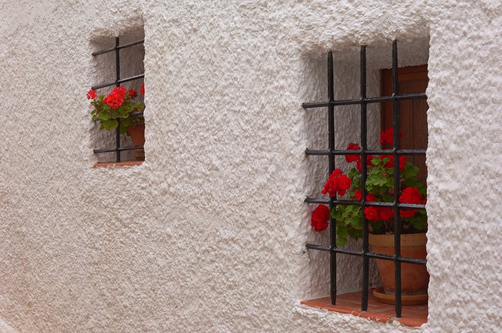 Stock Photo: 1566-1028242 Old town, Mojacar, Almeria province, Andalusia, Spain