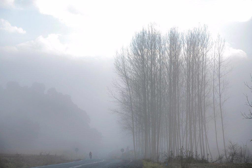 Mist landscape, Najerilla valley, road to Villaverde de Rioja, La Rioja, Spain : Stock Photo
