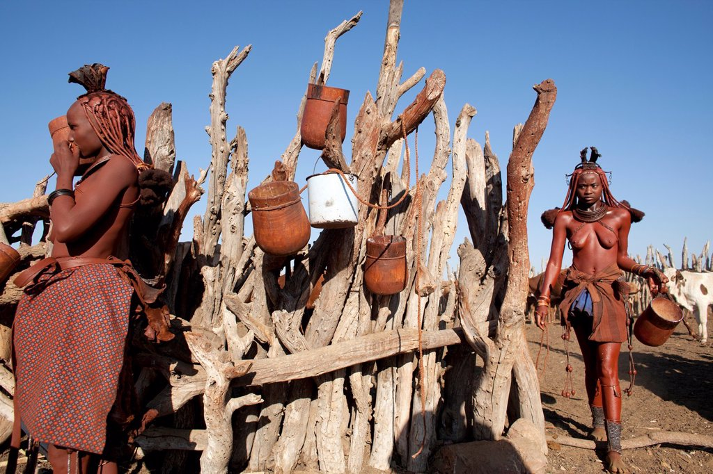 Stock Photo: 1566-1031097 Himba tribe in Namibia
