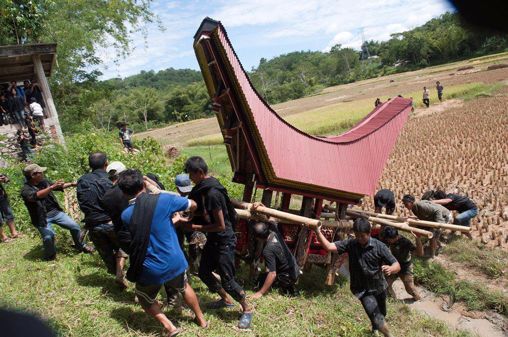 traditional funeral ceremony in Tana toraja, sulawesi,indonesia : Stock Photo