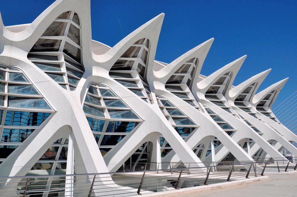 Valencia, Spain: Museo de las Ciencias Príncipe Felipe, at Ciudad de las Artes y Las Ciencias : Stock Photo