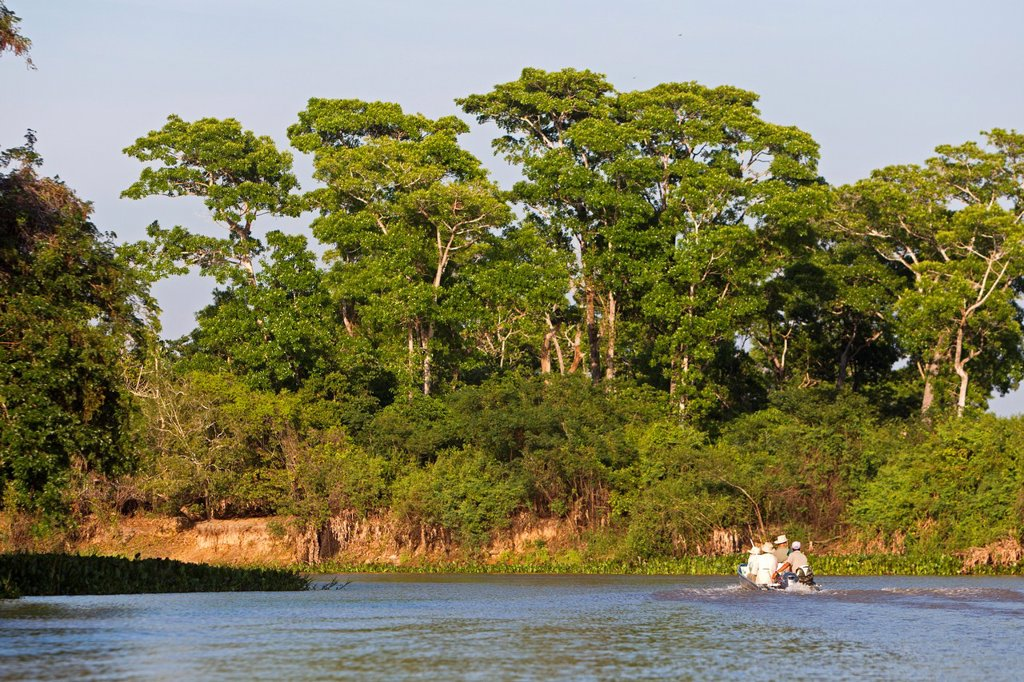 Stock Photo: 1566-1039105 Brazil, Mato Grosso, Pantanal area, tourists on the river Cuiaba.