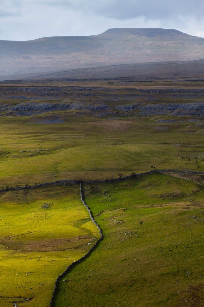 Stock Photo: 1566-1042473 England, North Yorkshire, Yorkshire Dales National Park  Looking towards the peak of Ingleborough and the Moughton Scars, a natural karst landform limestone pavement which is common in the Yorkshire Dales