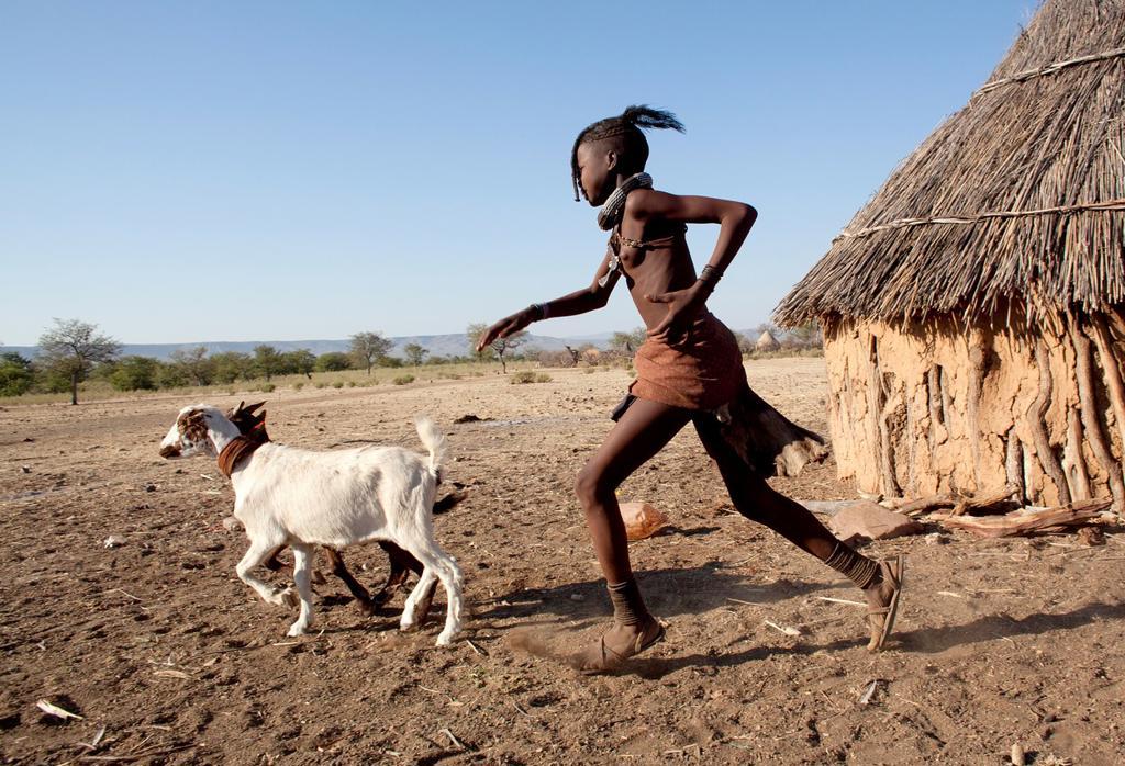 Himba tribe in Namibia : Stock Photo