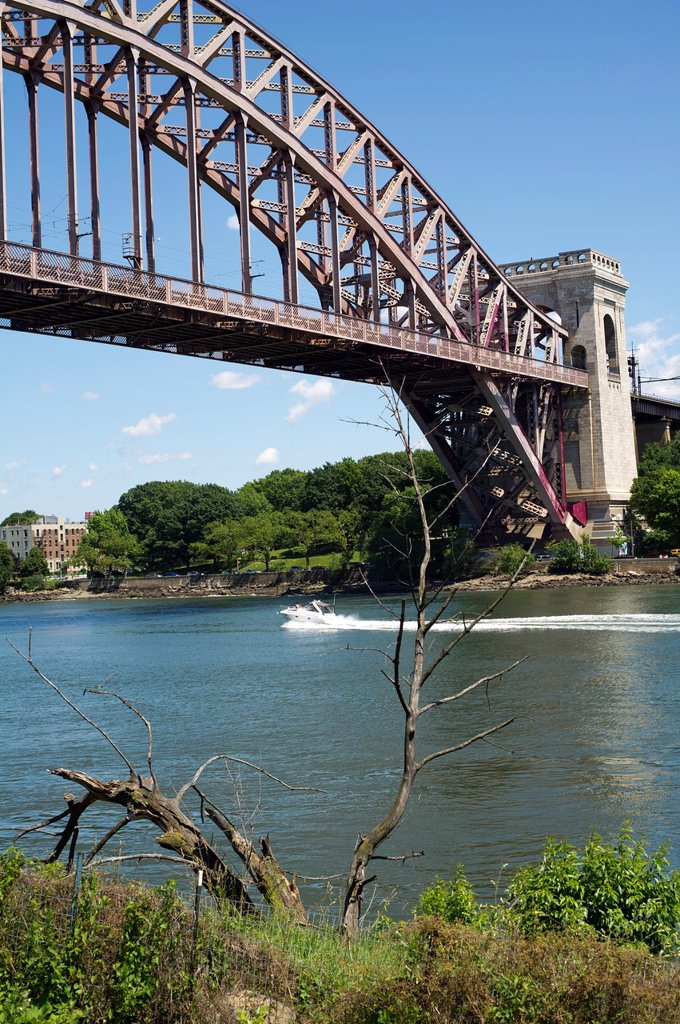 Stock Photo: 1566-1048816 Hell Gate Bridge seen from Randall´s Island Park in the East River in New York