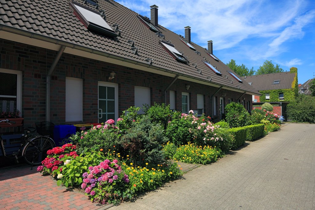 D-Krefeld, Rhine, Lower Rhine, Rhineland, North Rhine-Westphalia, NRW, residential buildings at Heinrich-Band Weg, row houses, front gardens, flower beds : Stock Photo