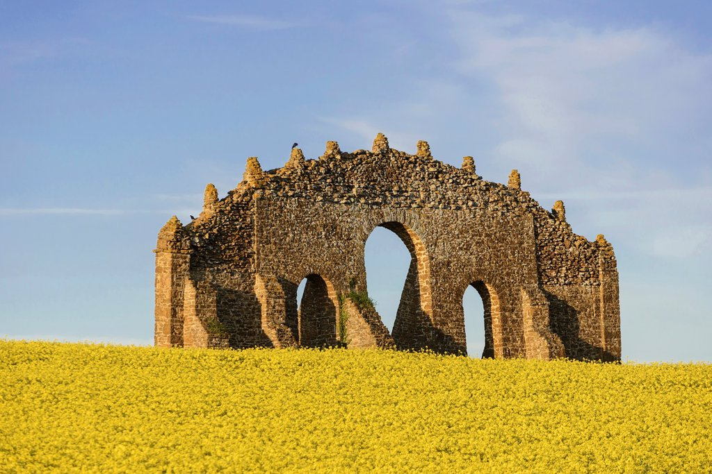 Stock Photo: 1566-1050549 Rousham eyecatcher in oil seed rape field, Steeple Aston, Oxfordshire, Engand, UK