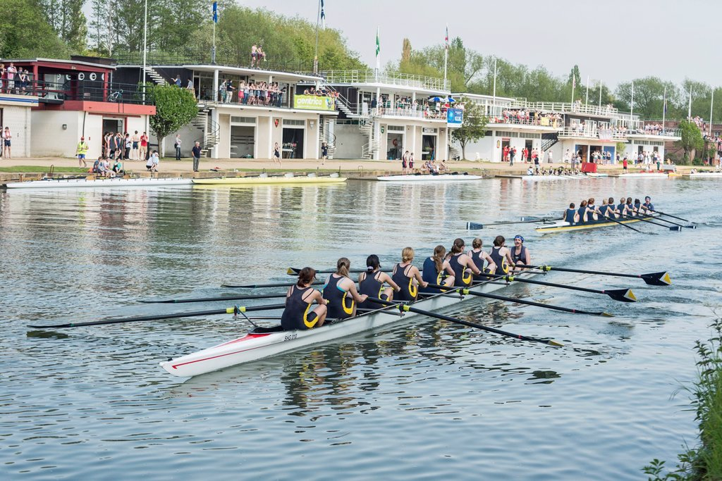 Stock Photo: 1566-1050550 Female college students racing during the Eights Week Oxford University rowing competition, Oxford, England, UK