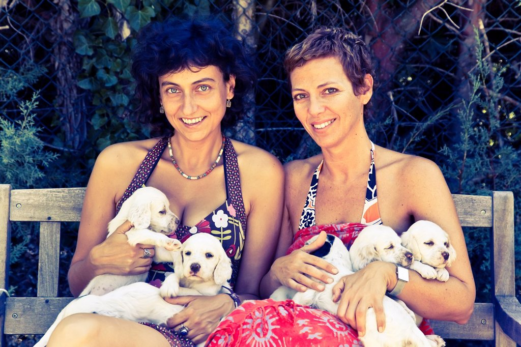 Stock Photo: 1566-1052848 young women with a dog brood