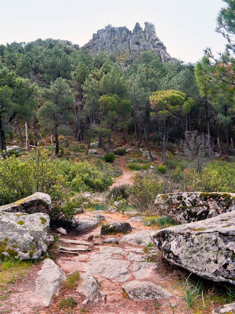 Stock Photo: 1566-1053909 The Muñana cliff  Cadalso de los Vidrios  Madrid  Spain