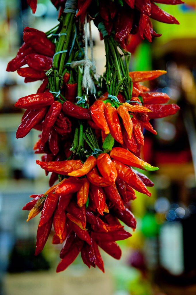 Stock Photo: 1566-1054059 Colorful chilies hang in a market in Florence, Tuscany Italy
