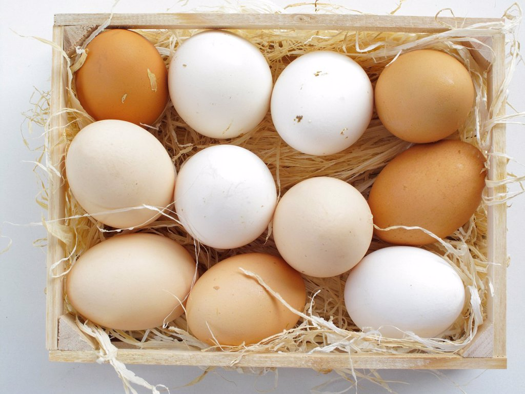 Duck and goose eggs : Stock Photo