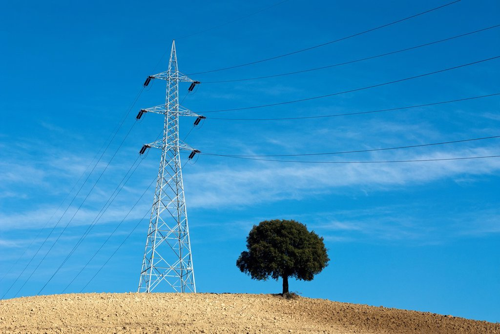 Stock Photo: 1566-1065944 Electricity pylon and tree in cultivated field  Umbria, Italy