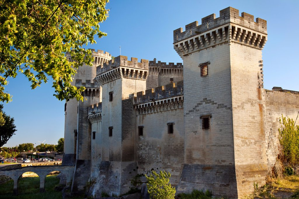 Tarascon Castle near Arles, Provence France : Stock Photo