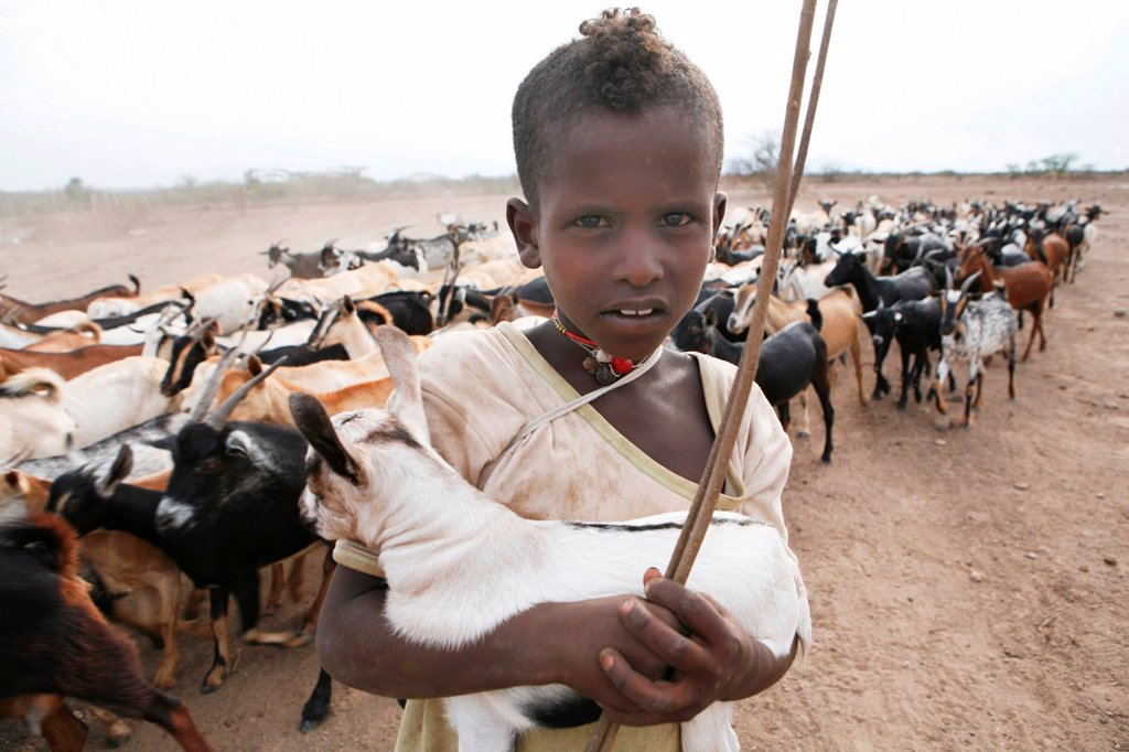 Stock Photo: 1566-1072273 Ethiopian people living in the North of the country are related to Somali people They are nomadic and live from cattle farming Most of them however, live in a village The men are considered adult already on a very young age and have to protect the family
