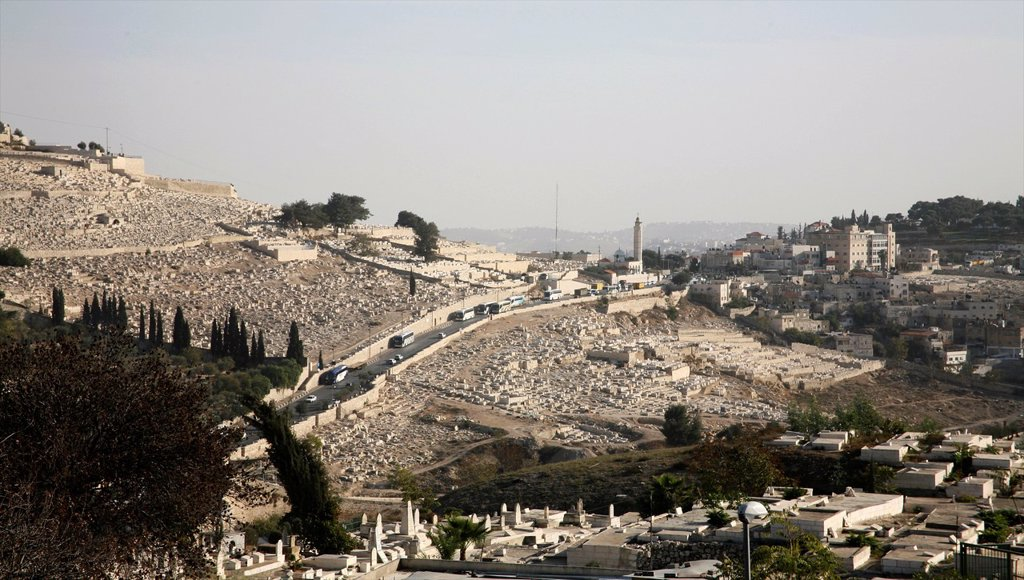 Stock Photo: 1566-1072963 View of the Mount of Olives from the old city of Jerusalem