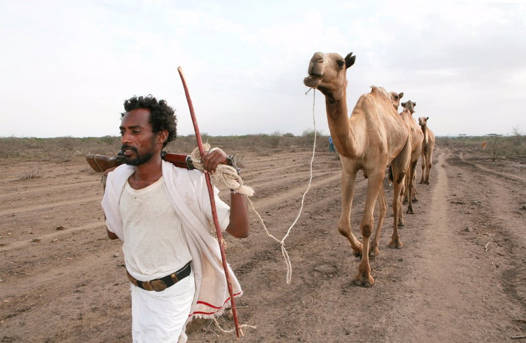 Stock Photo: 1566-1074328 Ethiopian people living in the North of the country are related to Somali people They are nomadic and live from cattle farming Most of them however, live in a village The men are considered adult already on a very young age and have to protect the family