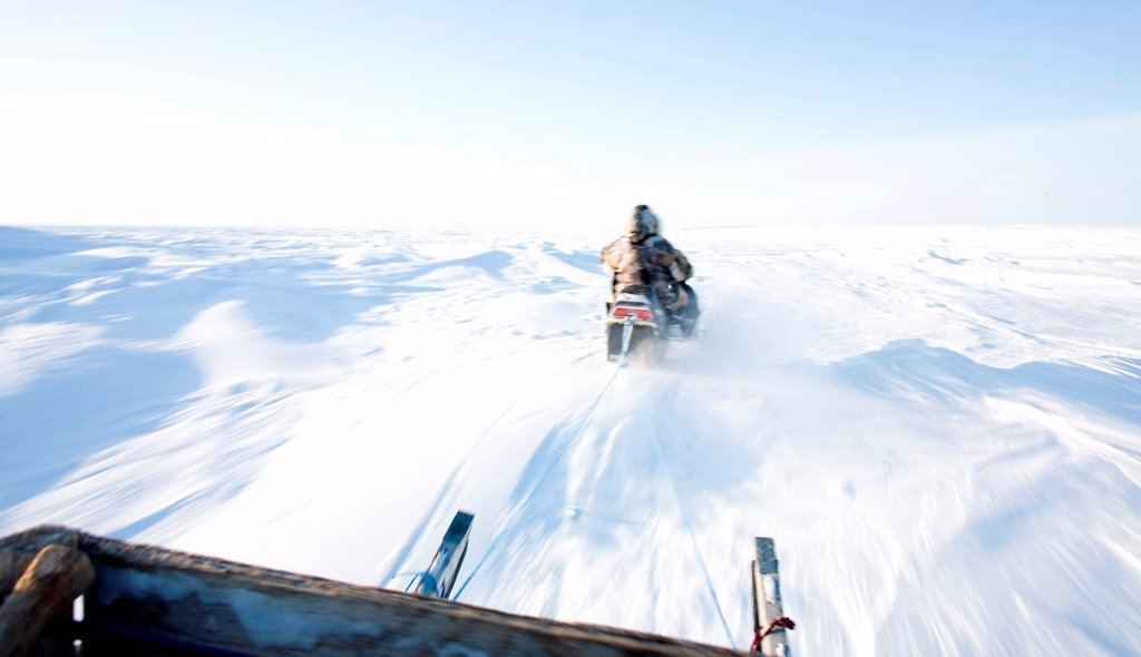 Stock Photo: 1566-1076404 Gojahaven is a town in the far north of canada in 1000 where Inuits living snow mobiles are the main transport on the North pole Every Inuit owns one and has replaced the traditional dogsledge