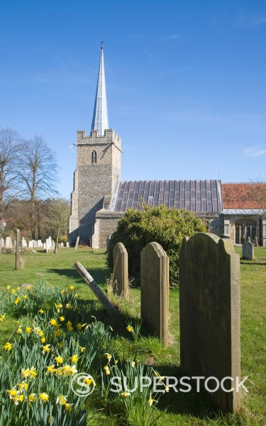 Parish church of Saint Peter at the village of Yoxford, Suffolk, England : Stock Photo