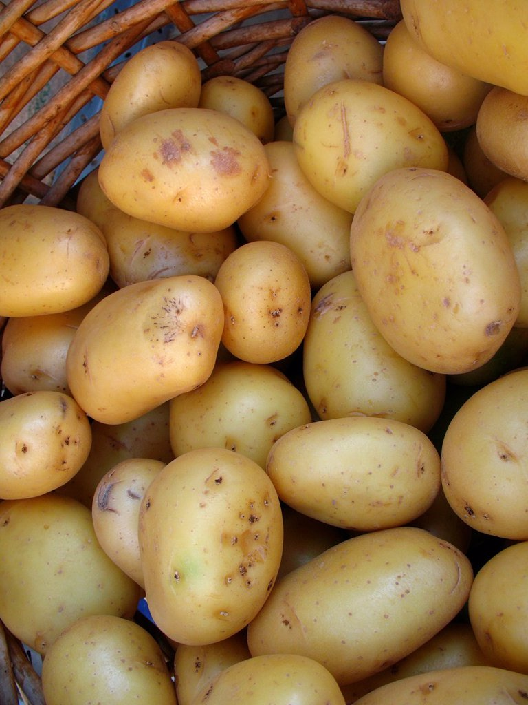 Stock Photo: 1566-1080219 Potatoes