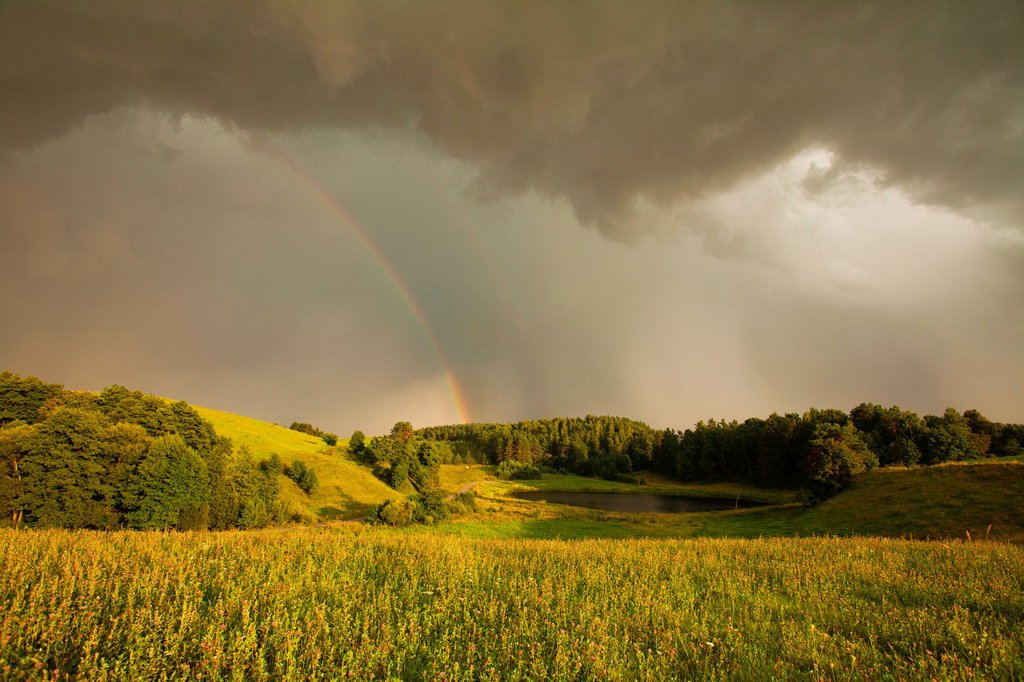 After a storm Suwalski region Poland : Stock Photo