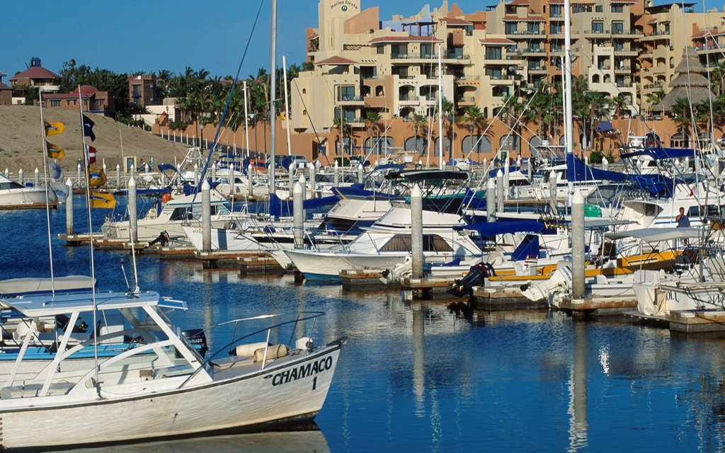 Stock Photo: 1566-1085457 Marina at Cabo San Lucas