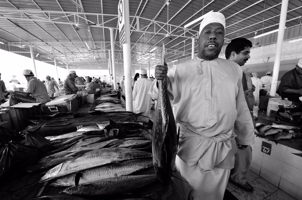 Stock Photo: 1566-1087087 Early morning at the Fish Market of Muscat, Oman.