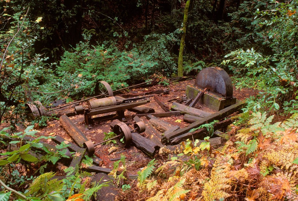 Stock Photo: 1566-1087788 Mill ruins, Fall Creek Unit-Henry Cowell State Park, California